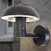 Elstead Lutec Spril UT/SPRIL W2251S Black Exterior Wall Lamp