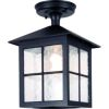 Elstead Winchester BL18A Outdoor Hanging Lantern